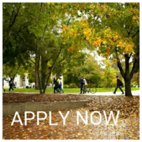 GDR_Apply_Now